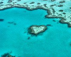 Herzriff Great Barrier Reef #australien #greatbarrierreef