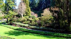 The Butchart Gardens-Spring, Part 1-Sunken Garden, Canada / Only Time-Enya/ #butchartgardens #spring #gardens #explorecanada