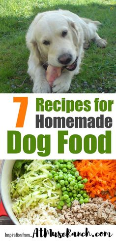 Best party food for a crowd crowd and pdf 7 must try dog food recipes to keep fido healthy and save you money forumfinder Image collections