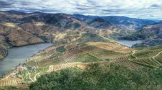 A train journey through the majestic Douro Valley: best wineries, hotels and restaurants