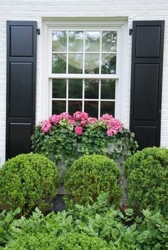 Layered look - seasonal window box + small evergreens, +perrenials + seasonal annuals + perrenial groundcover . Classic home front Pretty Flowers, Pretty In Pink, Fresh Flowers, Black Shutters, Garden Windows, Enchanted Home, Container Flowers, Container Plants, Succulent Containers