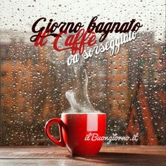 Weather Rain, Happy Day, Good Morning, Alcoholic Drinks, Coffee, Video, Dsquared2, Wolf, Humor