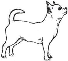chihuahua drawing wallpaper | Funny and Cute Black HD Pet Dog and ... - ClipArt Best - ClipArt Best