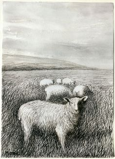Henry Moore (British, 1898-1986), Sheep Grazing in Long Grass I, 1981. Ballpoint pen, charcoal, wax crayon, chinagraph, watercolour wash. Moose Art