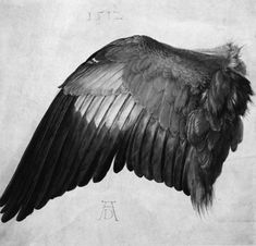 Durer's wing - bw outline with this quote: Wer weiß, ob derselbe Vogel nicht hinklang durch uns