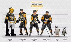 Penguin Awareness Day, Evgeni Malkin, African Penguin, Gentoo Penguin, Lets Go Pens, Penguin Love, Sports Graphics, Sidney Crosby, National Hockey League
