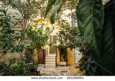 A small green courtyard in an ancient town in Italy