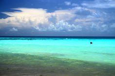 Lo que siguees algo así como la ruta soñada por hacer en la Riviera Maya, en una extensión relativamente corta y muy fácil de recorrer. La Riviera Maya es una extensión de costa en México entre Puerto Morelos (a sólo 16 kilómetros al sur del aeropuerto de Cancún), y Punta Allen, 140 kilómetros al sur, …