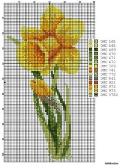 Narcissus - lily of the valley and daffodils - Flowers - File Catalog - HOBBY Cross Stitch Cards, Cross Stitch Flowers, Cross Stitch Embroidery, Hand Embroidery, Cross Stitch Patterns, Daffodil Flower, Butterfly Flowers, Needlepoint Patterns, Perler Patterns