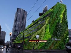 From grey to green; The beauty of vertical gardens | Vancouver Sun