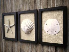 Cottage Chic Set of Beach Wall Art Sea Shells Home Decor Beach Wall Decor Wall Art Coastal Decor Coastal Art BLACK wth IVORY Burlap (54.99 USD) by OMearasCottageCharm
