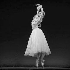 ballet...grace...passion....fluidity....elegance