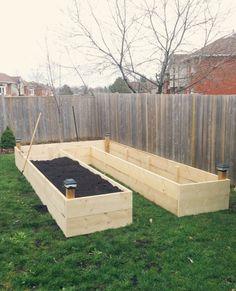 Raised garden bed in progress