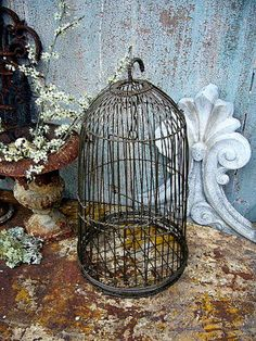 bird cage. rusty urn. chippy paint.