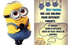 Top 97 Funny Minions quotes and sayings 49 Minions Quotes, Jokes Quotes, Funny Quotes, Life Quotes, Funny Pics, Qoutes, Sorry I Hurt You, Overwhelmed Mom, Funny Inspirational Quotes