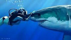 ♡ This woman kissing Sharky!