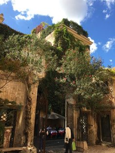 Via Margutta, central Rome.a peaceful oasis amidst the crowds of tourists. Best Of Rome, Street Snap, Rome Italy, Oasis, Natural Beauty, Nature, Rome, Naturaleza, Off Grid