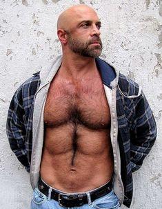 Tight gigantic powerful hairy bear workmen