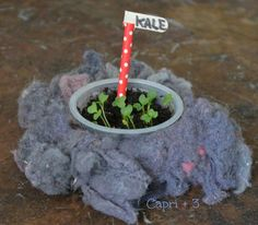 Re-purpose Dryer Lint for Gardening:  Green STEM Activity for Kids