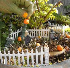 Halloween in the Miniature Garden by JanitC, via Flickr