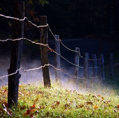 Sunrise Fence. |