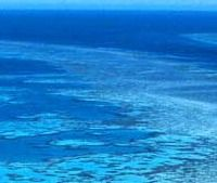 the Great Barrier Reef- one of the 7 wonders of the world