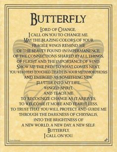 """The Butterfly Prayer poster addresses the spirit of this wondrous creature, seeking to learn from its transformation, whimsical flight, and fragility. 8 12"""" x 1"""