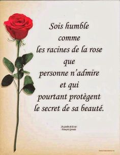 Be humble as the roots of the rose that no one .- Sois humble comme les racines de la rose que personne n& mais qui pro… Be humble as the roots of the rose that no one admires, but yet protect the secret of its beauty. Image Citation, Quote Citation, French Words, French Quotes, French Sayings, Daily Quotes, Best Quotes, Life Quotes, Jesus Christ Quotes