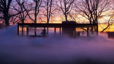 Veil by Fujiko Nakaya, an installation surrounding Philip Johnson's Glass House in New Canaan, CT.