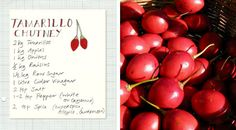 Tamarillo-chutney-recipe Fruit Preserves, Chutney Recipes, Fruit Recipes, Projects To Try, Spices, Crafting, Vegetables, Chutneys, Dressings