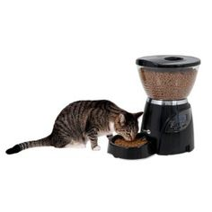Automatic cat feeder ensures meal is served in the right portion on your behalf. Check out best automatic cat feeder 2017 available in market