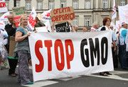 """11.12.13 - Non-GMO Food Market to Hit $800 Billion by 2017 · Environmental Management & Energy News · Environmental Leader - """"The report, Non-GMO Foods: Global Market Perspective, says European consumers have rejected foods made using ingredients with genetically modified organisms, forcing international food companies such as Unilever, Nestlé and Coca-Cola to introduce or begin to develop non-GMO versions of their products."""""""