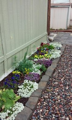 Fill space btween shed and garden fill with choc mint, Moss, or other walkable ground cover