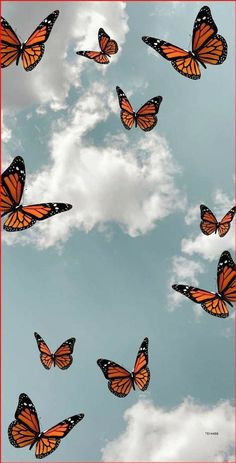 Effdeesea ♡ | Butterfly Wallpaper Iphone, Iphone Wallpaper