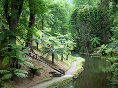 Tropical garden, Sao Miguel Island, Azores #Portugal