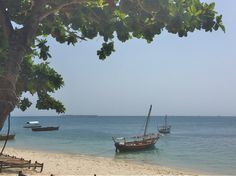 Dhows Anchored at the Beach