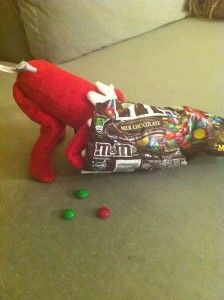 Cute Elf on the Shelf Idea...Eating the MM's
