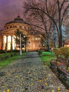 Adolescence, Romania, Beautiful Places, Paris, Mansions, Architecture, House Styles, Illustration, Bucharest