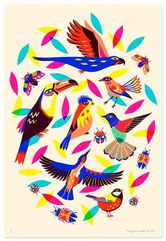 Image of Birds & Bugs