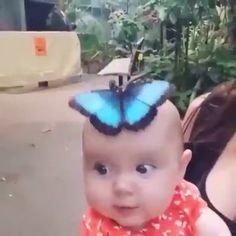 Little Cute Girl With Beautiful Butterfly 🦋 - Babybilder - Adorable Animals Cute Funny Animals, Cute Baby Animals, Funny Cute, Animals And Pets, Funny Babies, Funny Kids, Cute Kids, Cute Babies, Baby Kids