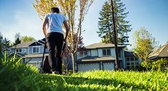 How a Change in Mortgage Rate Impacts Your Homebuying Budget Diy Herb Garden, Lawn And Garden, Garden Grass, Lawn Edger, Grass Weeds, Garden Power Tools, Lawn Care Tips, Lawn Sprinklers, Shopping
