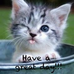 Have a purtfect day.