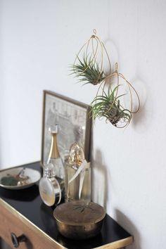 Gestalte wunderhübsche Halter für deine Tilansien / Luftpflanzen ganz einfach aus Messingdraht - ein einfaches DIY Projekt für dein Zuhause! Tilansien / Luftpflanzen Halter aus Draht selber machen | DIY Deko | DIY Home | DIY Idee | Hängepflanze | Wohnen mit Pflanzen