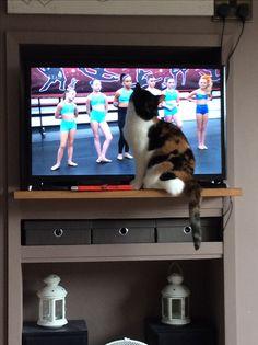 Watching dance moms x