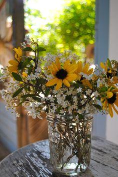 Florida Native Flower Arrangement - Walter's Viburnum & Beach Dune Sunflower. @ Florida Native Plants Nursery