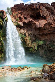 Havasu Falls in Havasupai Arizona Grand Canyon Waterfalls, Havasupai Waterfalls, Arizona Waterfalls, Havasupai Arizona, Waterfall Hikes, Family Road Trips, Beautiful Waterfalls, Science Nature, Adventure Time