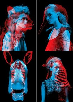 #humeurdujour #ledeclicanticlope / Je suis un animal sauvage !!