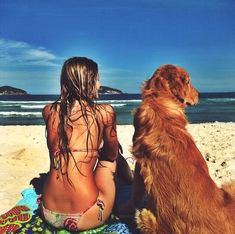I wish we could take Hana Boy to the beach like this. He would not know what to do with himself.