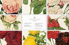 Taylor Negro - interabang flower business cards