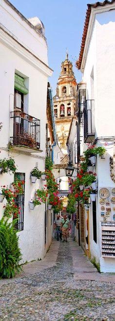 Calle de las Flores al lado de la Mezquita de Córdoba, España